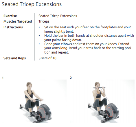 Rokai_Seated_Tricep_Extensions.png
